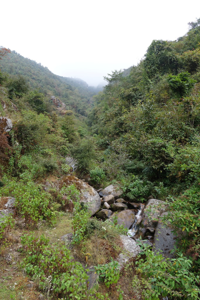 In den Hügeln über Kagate